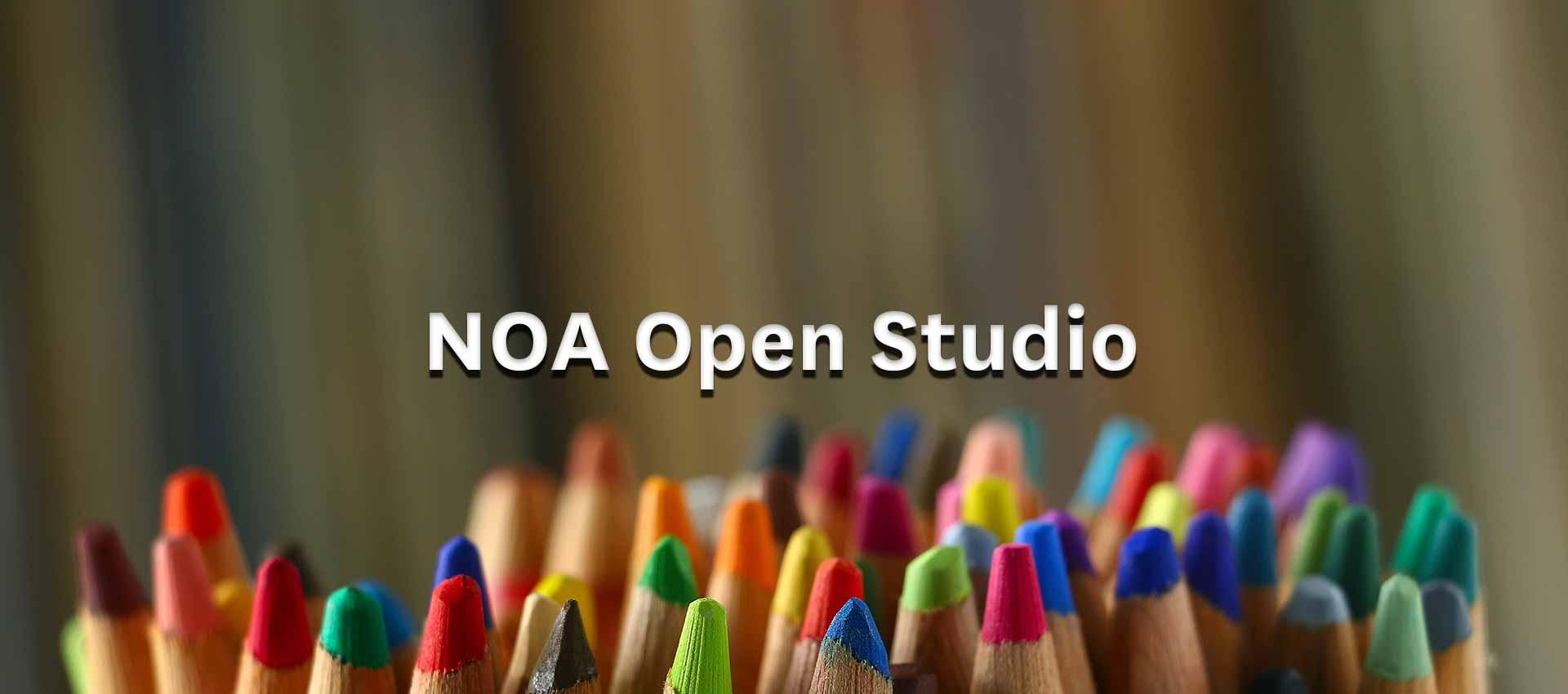 https://www.temanawa.co.nz/wp-content/uploads/2021/03/NOA-Open-Studio.jpg