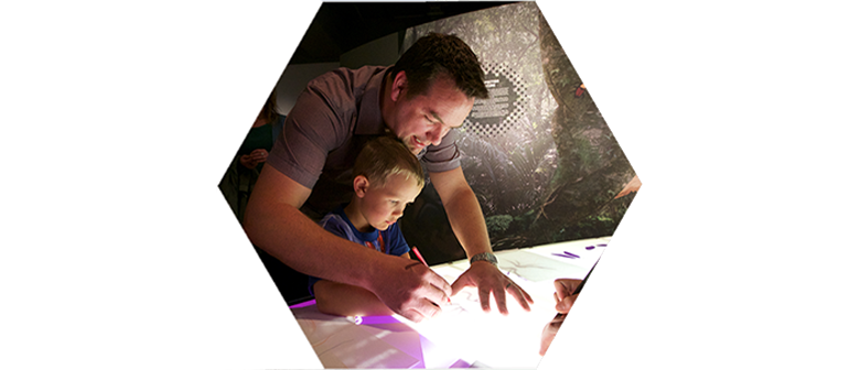 An adult and a child draw bugs on a backlit table